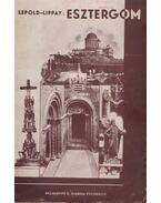 Esztergomi útikönyv - Dr. Lepold Antal, Dr. Lippay Lajos