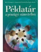 Példatár a pénzügyi számvitelhez - Dr. Sztanó Imre
