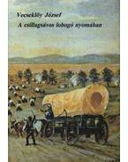 A csillagsávos lobogó nyomában I-II. kötet - Dr. Vecseklőy József