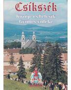 Csíkszék - Dr. Vofkori László