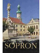 Sopron - Duics Pál, Winkler Gábor