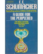 A Guide for the Perplexed - E. F. Schumacher