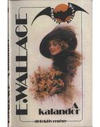 A kalandor - Edgar Wallace