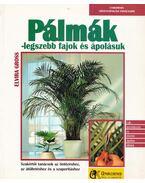 Pálmák - legszebb fajuk és ápolásuk - Elvira Gross