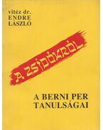 A zsidókról - Endre László