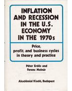Inflation and Recession in the U.S. Economy in the 1970s: Price, profit, and business cycles in theory and practice - Erdős Péter, Molnár Ferenc
