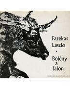 Bölény a falon - Fazekas László