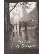 A régi Budapest - Féja Géza