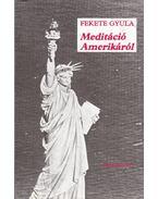 Meditáció Amerikáról - Fekete Gyula