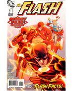 The Flash Secret Files and Origins 2010 1. - Kolins, Scott, Geoff Johns