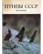 A Szovjetunió madarai - Alkafélék (orosz) - Flint, V. E., A. N. Golovkin