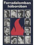 Forradalomban, háborúban - Hetés Tibor