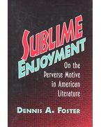 Sublime Enjoyment - On the Perverse Motive in American Literature - FOSTER, DENNIS A,