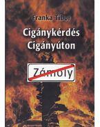 Cigánykérdés cigányúton - Franka Tibor