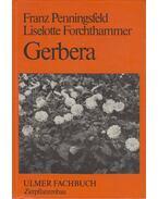 Gerbera - Franz Penningsfeld, Liselotte Forchthammer