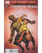 Shadowland: Power Man No. 2. - Fred Van Lente, Asrar, Mahmud