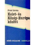 Kelet- és Közép-Európa között - Fried István