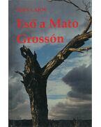 Eső a Mato Grossón - Füry Lajos