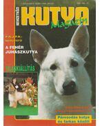 Nemzetközi Kutya Magazin I. évf. 1996/2. - Gácsi Márta