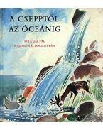 A csepptől az óceánig - Gál Pál
