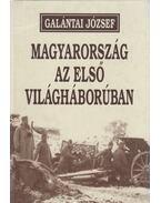 Magyarország az első világháborúban - Galántai József