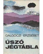 Úszó jégtábla - Galgóczi Erzsébet