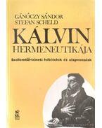 Kálvin hermeneutikája - Gánóczy Sándor, Stefan Scheld