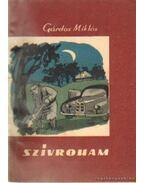 Szívroham - Gárdos Miklós