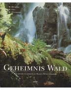 Geheimnis Wald - Winfried Bücking, Wilfried Ott, Wolfgang Püttmann