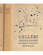 Gelléri Andor Endre összegyűjtött novellái I-II. - Gelléri Andor Endre