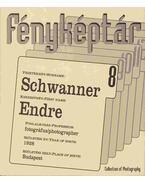 Schwanner Endre - Gera Mihály