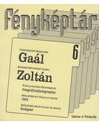 Gaál Zoltán - Gera Mihály