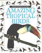 Amazing Tropical Birds - Gerald Legg