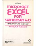 Microsoft Excel for Windows 4.0 - Gerő Judit