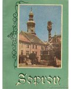 Sopron - Gimes Endre