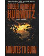 Minutes to Burn - Gregg Andrew Hurwitz