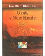 U nás v New Honte - Nálunk, New Hontban (szlovák nyelvű) - Grendel Lajos