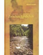 Zwischen Landschaft - GRUBER-RIZY, JUDITH
