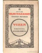 Vizen - Guy de Maupassant