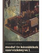 Modul tv-készülékek szervizkönyve I. - Gyurkovics Attila