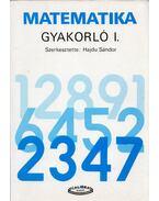 Matematika Gyakorló I. - Hajdu Sándor