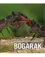 Szarvas- és orrszarvúbogarak - Hangay György, Merkl Ottó
