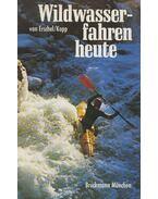Wildwasserfahren heute - Hans van Erschel, Norbert Knopp
