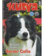 A kutya 2007. október - Harcsás Márta