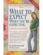 What to Expect When You're Expecting - Heidi Murkoff ,  Sharon Mazel
