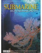 Submarine VI./2. 2005. április-május - Herold István