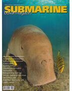 Submarine VIII./3. 2007. július-augusztus - Herold István
