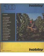 Hobby 10. - Hetényi István