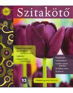 Szitakötő 2011/1 Tavasz - Horgas Judit, Levendel Júlia, Horgas Béla
