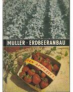 Erdbeeranbau - Horst Muller Dr.